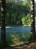 O lago Sinevir da montanha nas montanhas Imagem de Stock Royalty Free