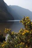 O lago superior Fotografia de Stock