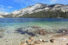 O lago Tioga em uma cavidade entre as montanhas Fotos de Stock Royalty Free