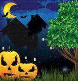 o'Lanterns de Gato y ciudad de la noche Imagen de archivo libre de regalías