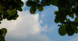 O lapso de tempo disparou das nuvens com céu azul video estoque
