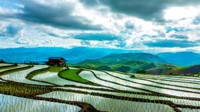 O lapso de tempo, nuvens que movem-se sobre os campos do arroz refletiu na água video estoque