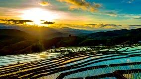 O lapso de tempo, por do sol sobre os campos do arroz refletiu na água vídeos de arquivo