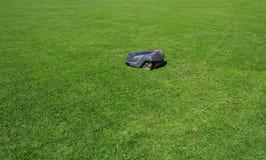 O lawnmower do robô cortado sega o gramado Fotografia de Stock Royalty Free