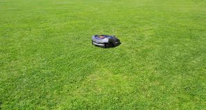 O lawnmower do robô sega o gramado Fotografia de Stock