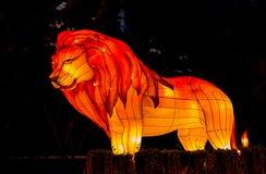 O leão colorido na noite Fotografia de Stock Royalty Free