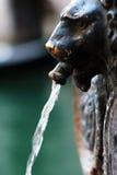 O leão dirigiu a fonte em Veneza Imagem de Stock Royalty Free