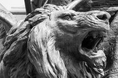 O leão torna-se hirto de medo Fotografia de Stock Royalty Free