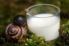O leite é saudável e prova imagem de stock