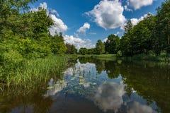 O leito fluvial de um rio pequeno, da água corrente, do sol e do silêncio - um sonho do ` s do pescador fotografia de stock royalty free