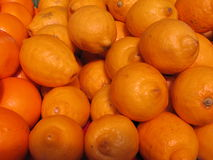 O lemmon de Meyer frutifica para a venda no mercado de Komarovsky nos visons Bielorrússia foto de stock