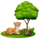 O leopardo dos desenhos animados estabelece sob uma árvore em um fundo branco ilustração royalty free