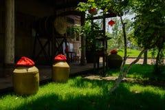 O licor range-me na jarda gramínea antes da casa de madeira chinesa antiga Imagens de Stock