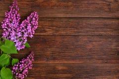 O lilás bonito em um fundo de madeira Foto de Stock