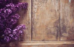 O lilás floresce o fundo imagens de stock