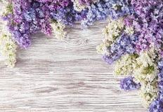 O lilás floresce o ramalhete no fundo de madeira da prancha, mola