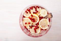 O limão do arando congelou a água da desintoxicação Imagens de Stock Royalty Free