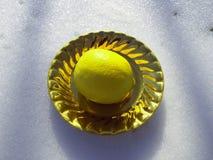 O limão na neve fotografia de stock