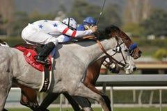 O limite do estrelato ganha os carvalhos de Santa Anita Imagem de Stock Royalty Free