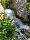 O Little Falls na montanha imagem de stock