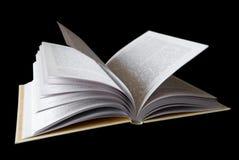 O livro com as páginas abertas Fotografia de Stock