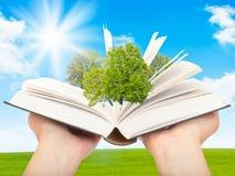 O livro de conhecimento Imagens de Stock