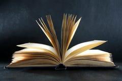 O livro de conhecimento Fotografia de Stock
