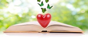 O livro do amor Fotografia de Stock