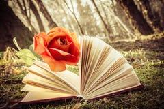 O livro e aumentou imagens de stock royalty free