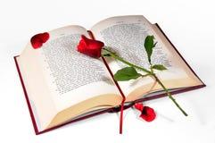 O livro e o vermelho levantaram-se Imagens de Stock
