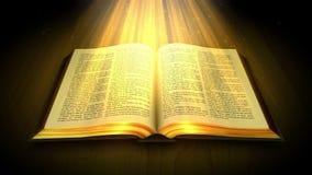 O livro sagrado ilustração royalty free