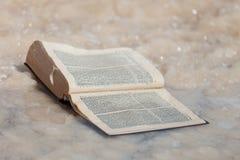 O livro velho esquecido coberto com o sal do Mar Morto israel foto de stock