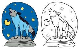 O lobo cinzento que urra na lua Fotos de Stock Royalty Free