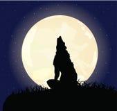 O lobo só senta-se em uma rocha ilustração do vetor