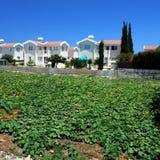 O Local abriga inProtaras Chipre Fotografia de Stock Royalty Free