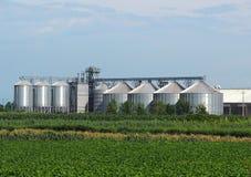 O local de armazenamento da grão com silos e sistema de distribuição de aço ondulados da grão brilha sob o sol do verão atrás dos Imagem de Stock Royalty Free