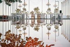 O local de encontro do jantar do copo de água setup ao lado da associação, reflexão na água, muitas rosas, orquídeas, flores, flo fotografia de stock royalty free