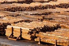O log termina o moinho medido de madeira da madeira serrada dos troncos de árvore do corte de círculos Fotos de Stock Royalty Free
