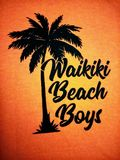 O logotipo de Waikiki Beach Boys Imagem de Stock