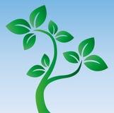 O logotype verde da árvore cerca Fotos de Stock
