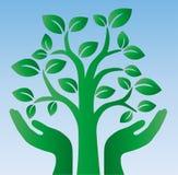 O logotype verde da árvore cerca Fotos de Stock Royalty Free
