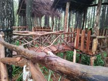 O lugar direito a descansar e relaxar na floresta fotografia de stock