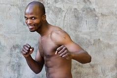 O lutador Fotos de Stock Royalty Free