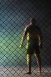 O lutador Fotografia de Stock Royalty Free