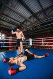 O lutador ganha a greve Imagem de Stock Royalty Free