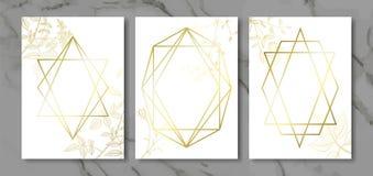 O luxo carda a coleção com plantas desenhados à mão e forma geométrica do ouro Fundo na moda do vetor Grupo moderno de cartão abs ilustração do vetor