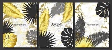 O luxo carda a coleção com textura de mármore, as folhas tropicais e quadro brilhante Fundo na moda do vetor Grupo moderno de car ilustração do vetor