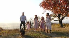 O luxo novo feliz vestiu a família que anda no parque do outono com seu cão video estoque