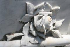 O mármore levantou-se Imagens de Stock Royalty Free