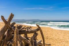 O múltiplo entra a praia imagens de stock royalty free